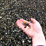 Whidbey Island beach rocks