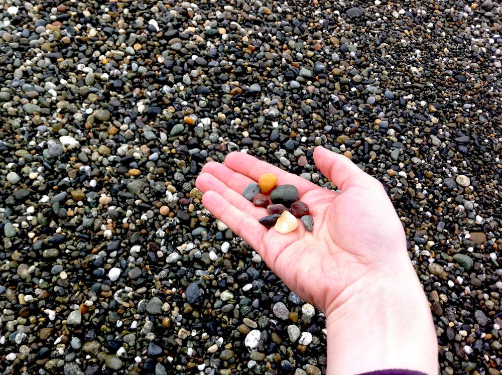Whidbey Island beach rocks