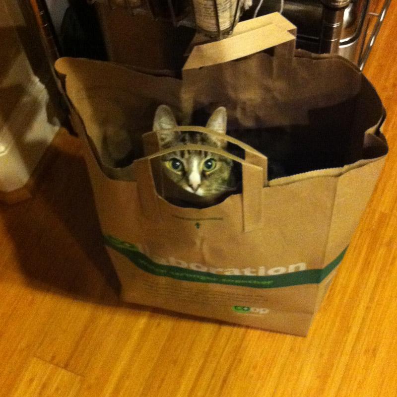Kami_paperbag